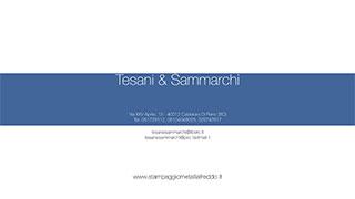 TESANI & SAMMARCHI S.R.L.